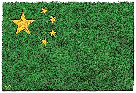 Bandeira-da-China-Verde